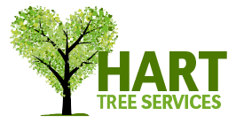 Hart Tree Services - Byron, Lismore, Ballina and Tweed Shire