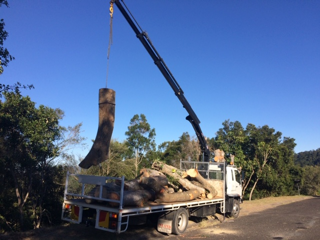 Timber Salvaging and Log Truck